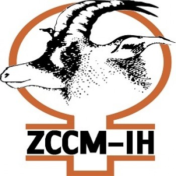 ZCCM Investments Holdings Plc